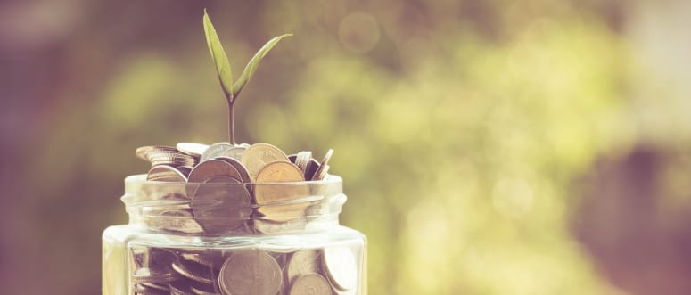 A jar filled with coins. A plant sprouts from the top of the coins.