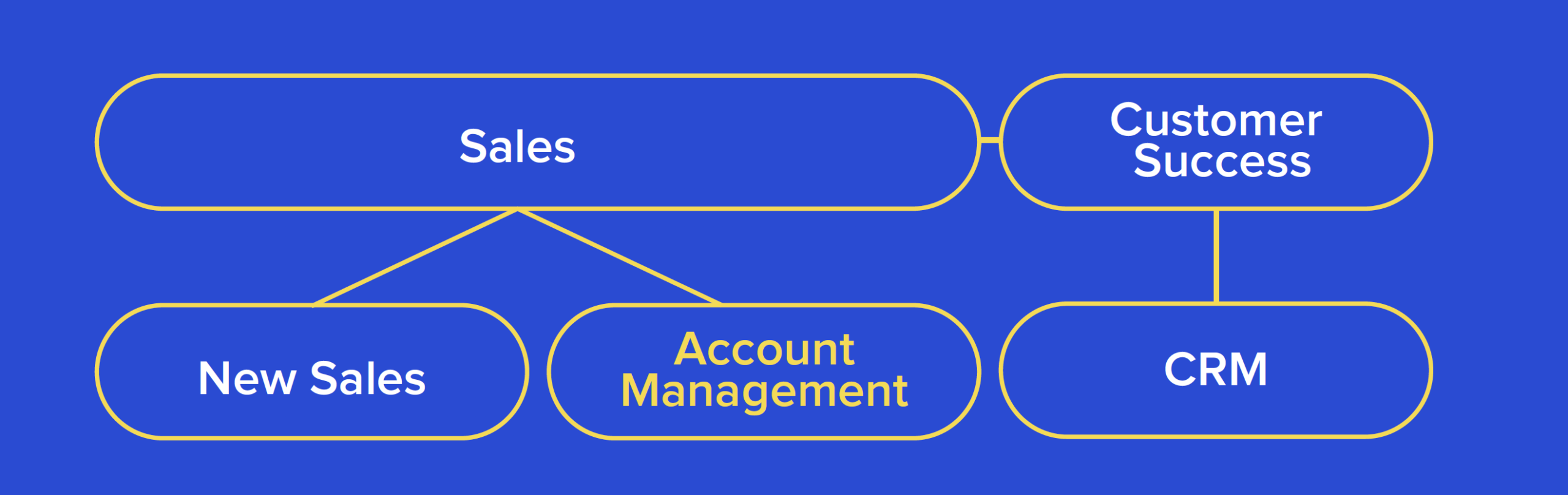 Org Structure with Account Management under Sales